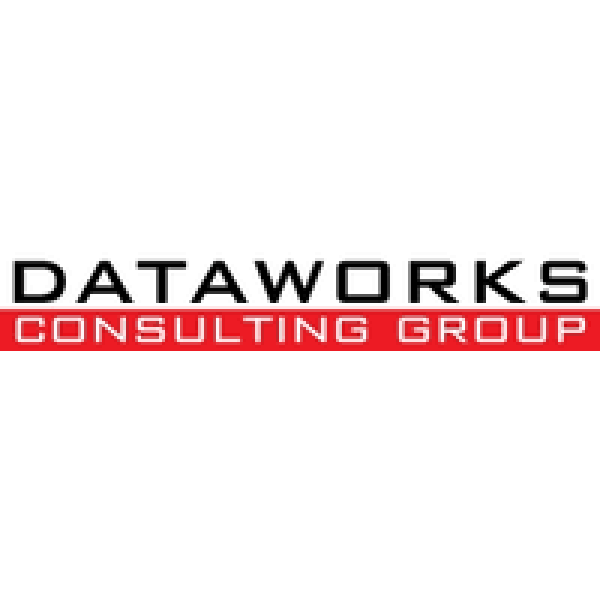 Dataworks Consulting Group